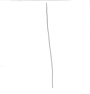 1. Take a piece of paper, small is fine, and draw a line down the middle, top to bottom.