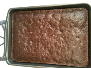 Can these brownies be saved?