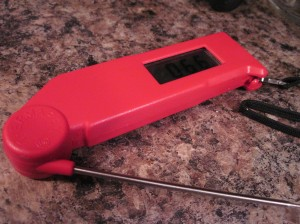 My Red Thermapen