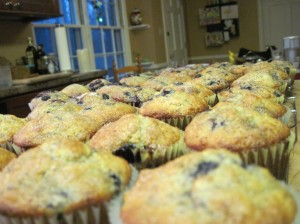 40 All-Purpose Blueberry Muffins