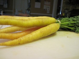 Spring Carrots from the CSA