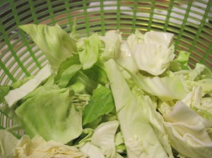 Pointy-Headed Cabbage in the Spin Cycle