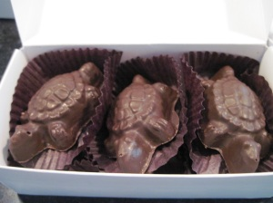 Chocolate Turtles from the Chocolate Tree