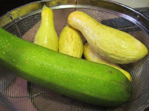 Zucchini and Squash Preparing to Meet Golden Sherry