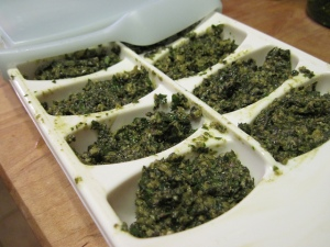 Pesto Cubes Heading for the Freezer