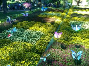 Flower garden (aka, respite) with supercool butterflies crafted from old CDs.