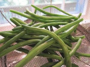 Filet Green Beans