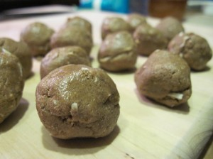 Peanut Butter Balls from TPC's Past: aka Protein Bombs