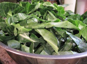 Collards puff up when you soak them!