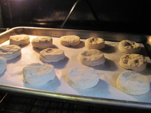 Biscuits in the oven! Don't fret imperfect shapes, they still eat well.
