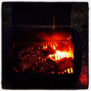 Let there be fire! Chicken on the barbie.