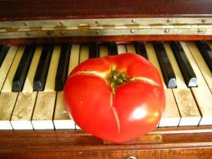 """I'm a little Mozart."" --$4 Tomato"