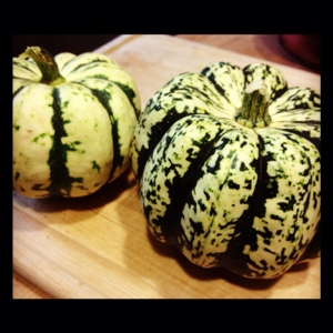 Sweet Dumpling Squash: Winter Visits the Summer Table