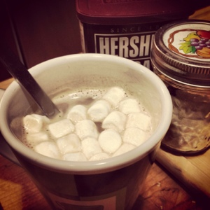 Hot cocoa with a few marshmallows added. No, a few more . . .