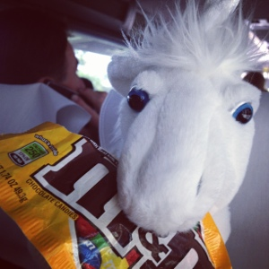 My Life on the Road: Unicorns and Chocolate