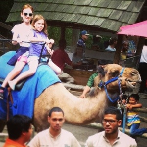 Back to school on a camel?